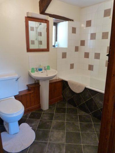 Fern Bathroom
